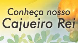 BANNER-CAJUEIRO.jpg